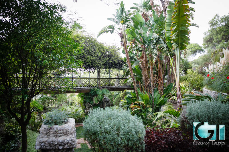 wedding-gibraltar-botanical-gardens-caleta-hotel-092014-4.jpg